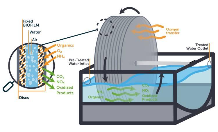 دیسک بیولوژیکی چرخان RBC
